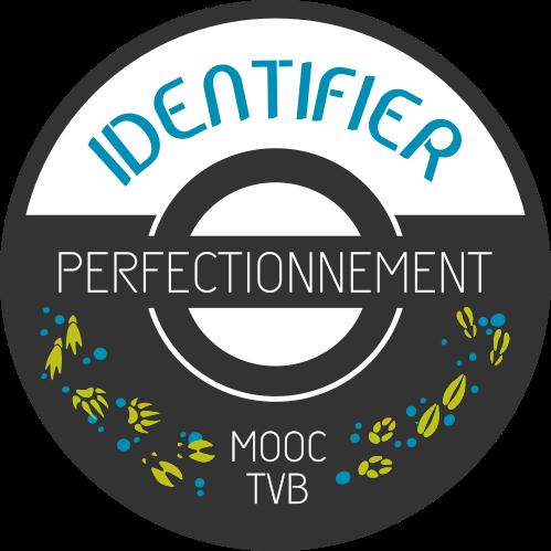 badge identifier N2