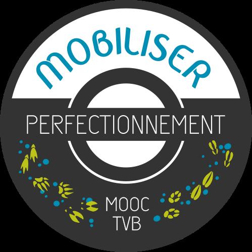 badge mobiliser N2