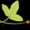 Avatar Tela Botanica